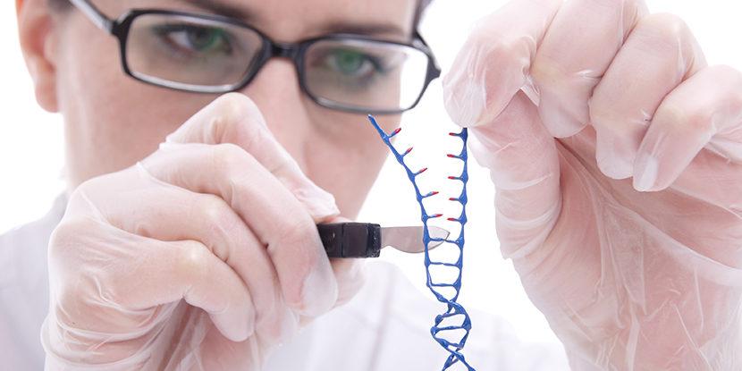 CRISPR-Cas gene-cutting patents