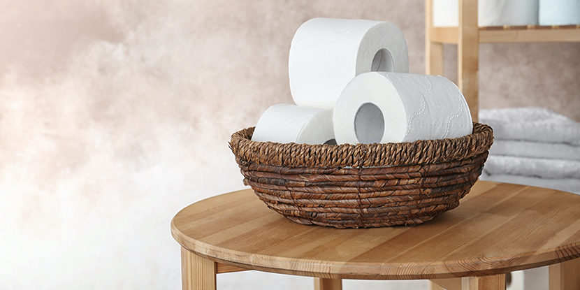 toilet paper patent, Dentons, Hoyng ROKH Monegier